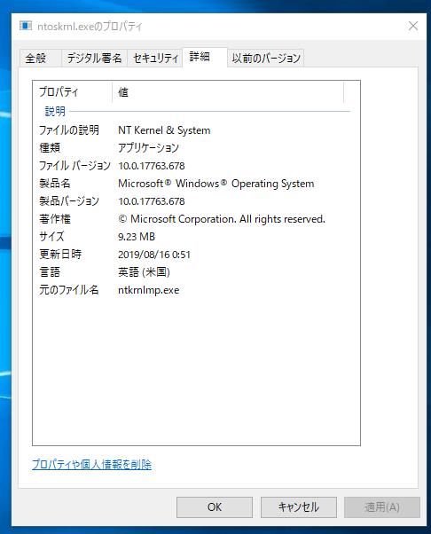 ntoskrnl-exeプロパティの詳細
