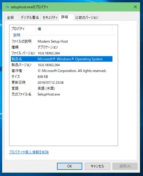 setuphostーexeプロパティ詳細