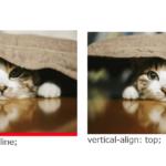 画像下の余白を消す方法